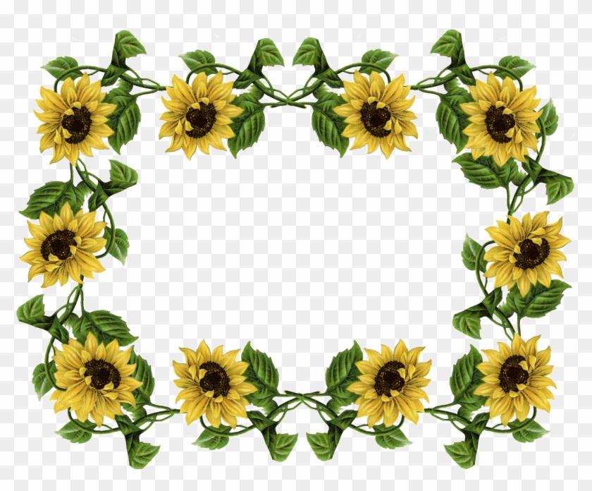 Sunflower Pics Frame - Sunflower Border #103953