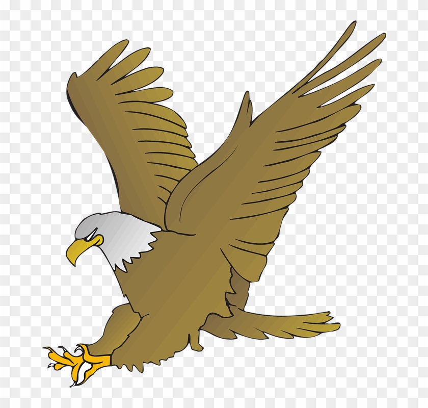 Animated Picture Of An Eagle #103957