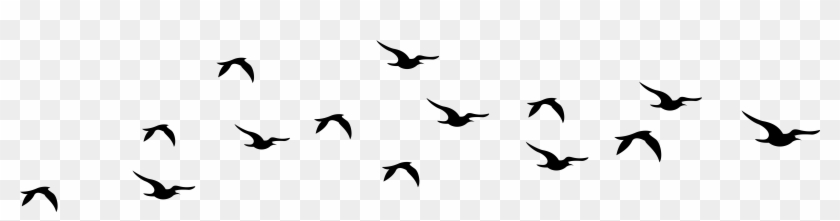 Clip Art Flying Bird Silhouette Cliparts Free Download Birds Flying Silhouette Png Free Transparent Png Clipart Images Download