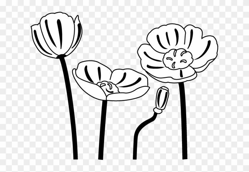 Poppy Clip Art Black And White - Poppies Black And White Clipart #104696