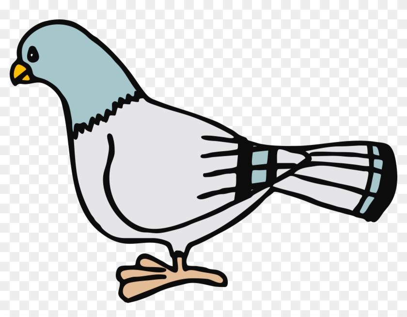 Big Image - Pigeon Clip Art #106689