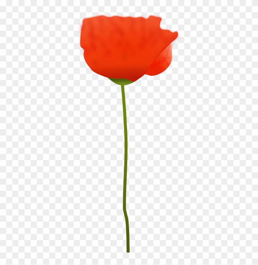Poppy Flower Clip Art - Free Picture Of A Poppy Flower #107188