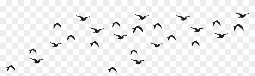 Wildlife Clipart Bird Flock Pencil And In Color - Birds Black And White Png #107422