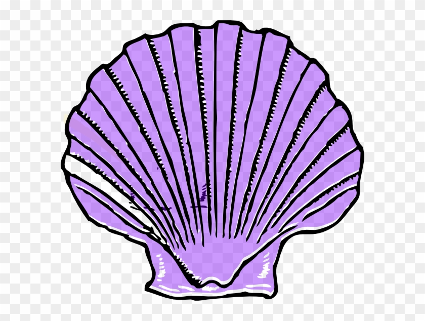 Download - Purple Shell Clipart - Free Transparent PNG ...