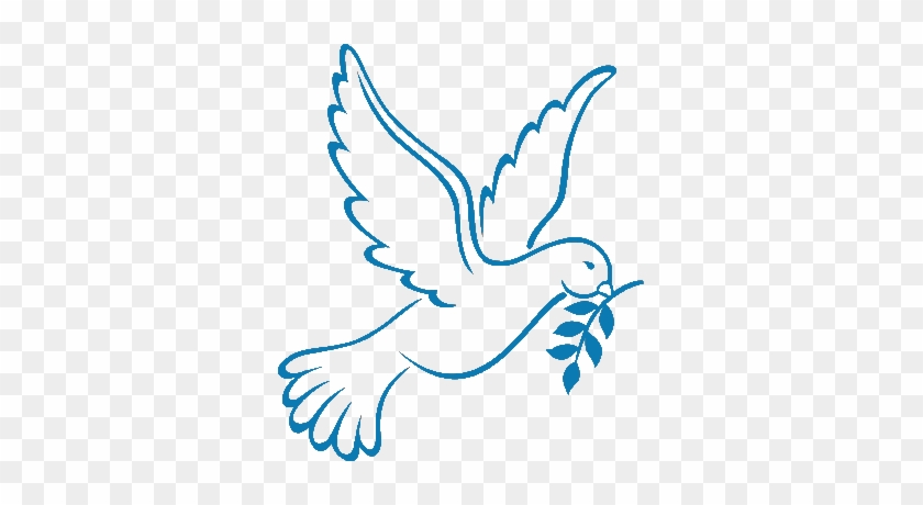 Holy Week Schedule - Dove Drawing #111116