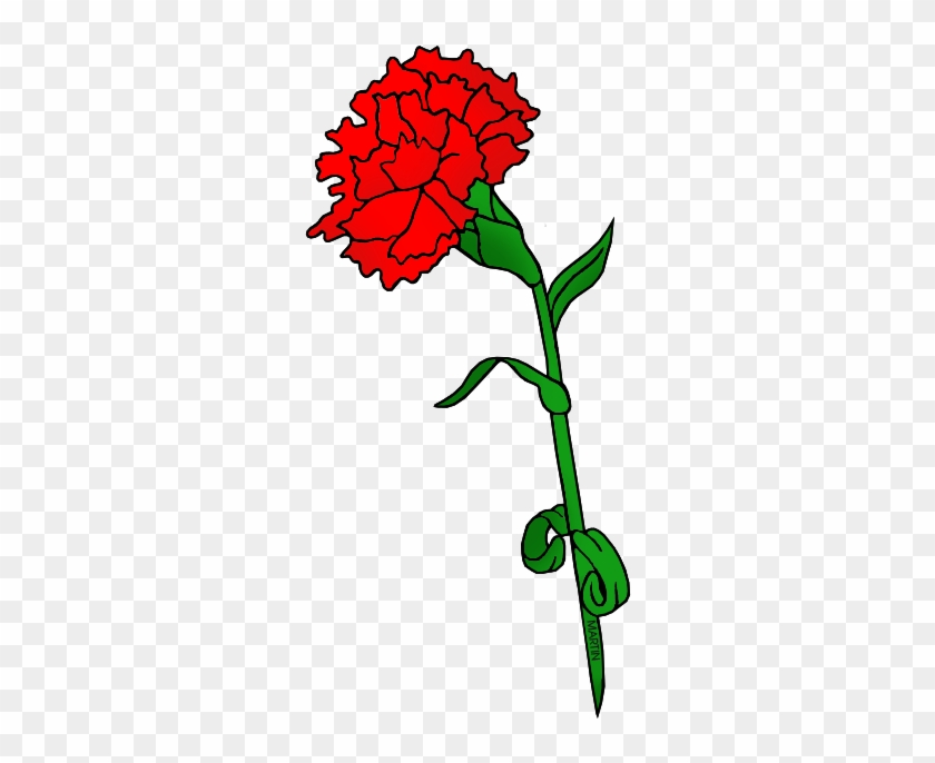 Red Carnation Ohio State Flower Clipart Free Transparent Png Clipart Images Download