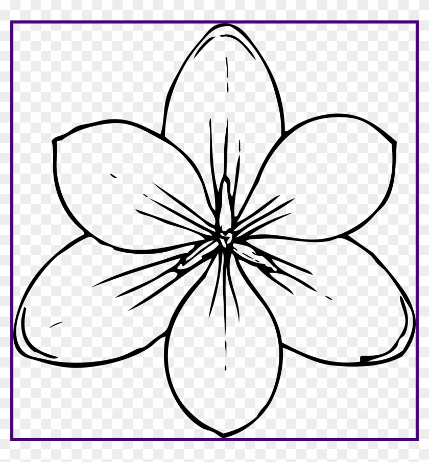 Awesome Flower Drawing Coloring Page | Kids Play Color | Poppy ... | 905x840