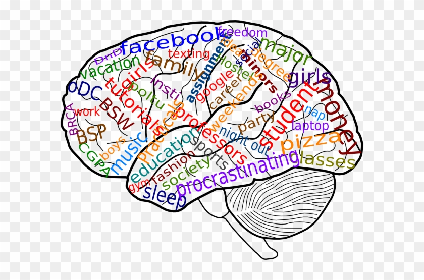 Your Brain On College Clip Art At Clker Psychology Clipart