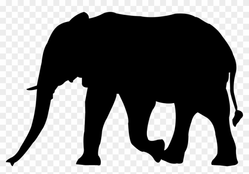 Africa Clipart Africa Nature - Zoo Animal Silhouettes Transparent #604347