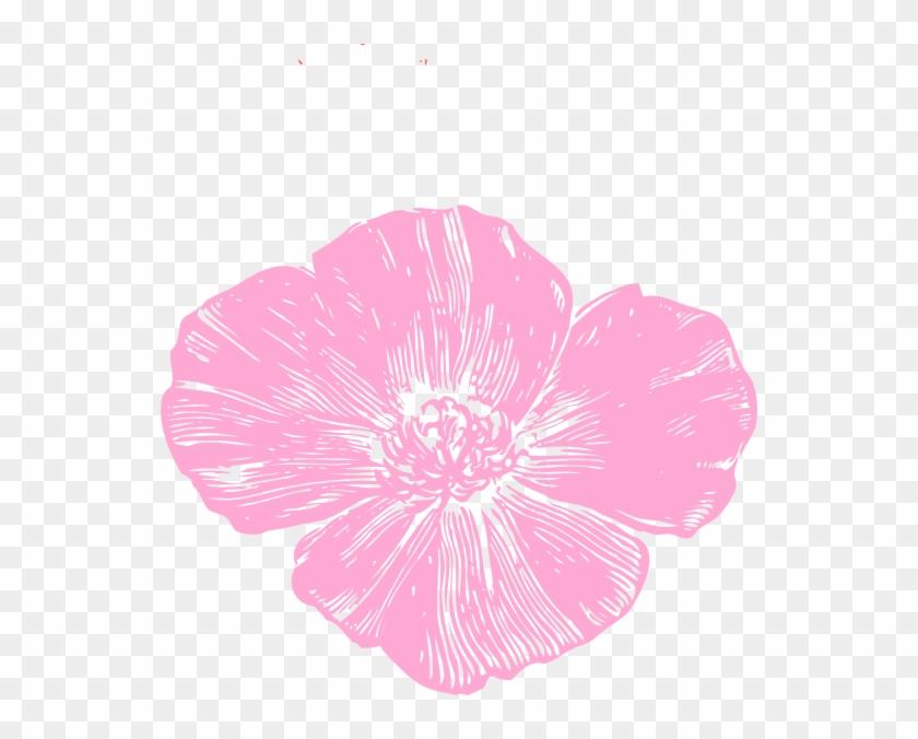 Pink Poppy Flower Clipart #611880