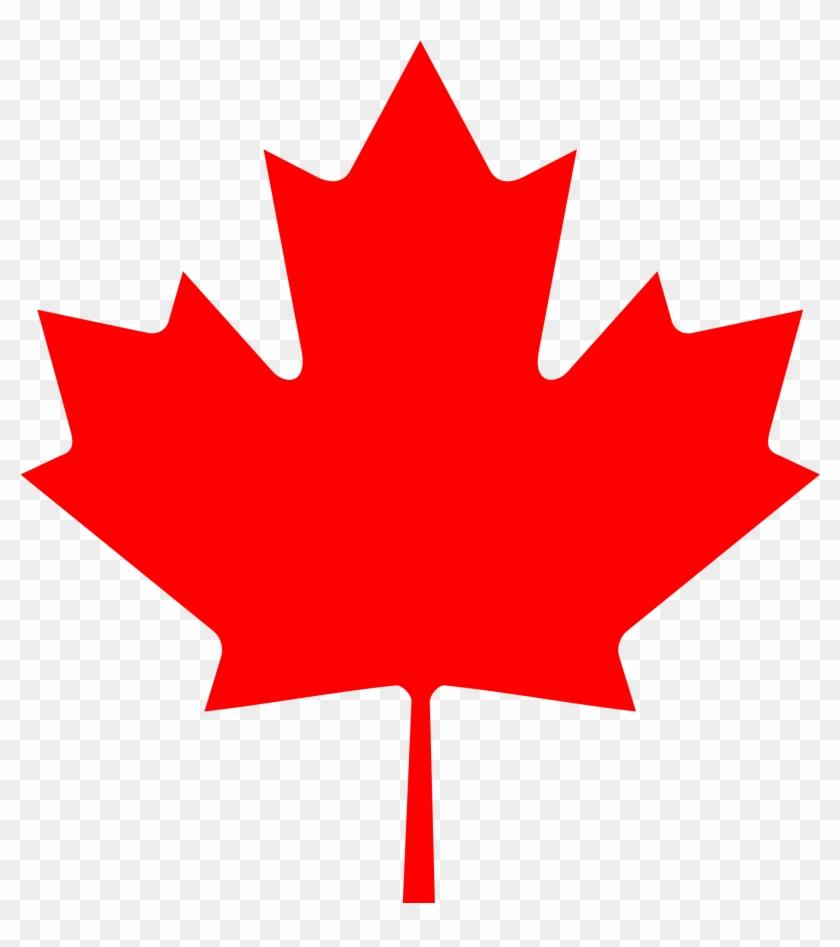 Maple Leaf - Canada Flag Maple Leaf #614063