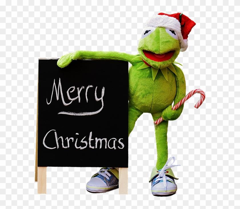 Kermit, Frog, Isolated, Christmas, Santa Hat, Cute - Christmas ...