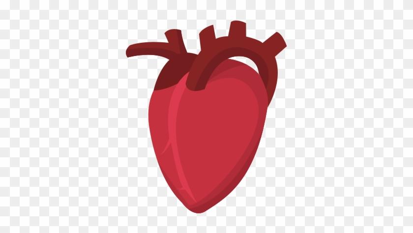 Human Heart Cardio Healthy Icon - Human Heart Vector Png #627859