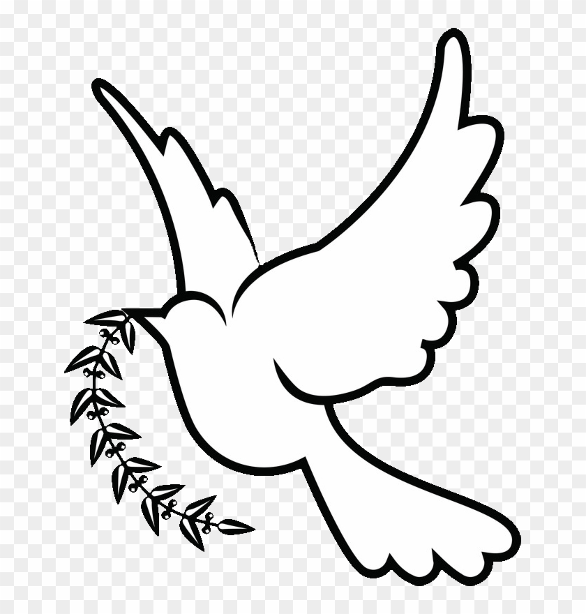Columbidae Doves As Symbols Christianity Clip Art - White Dove Drawing Png #112577