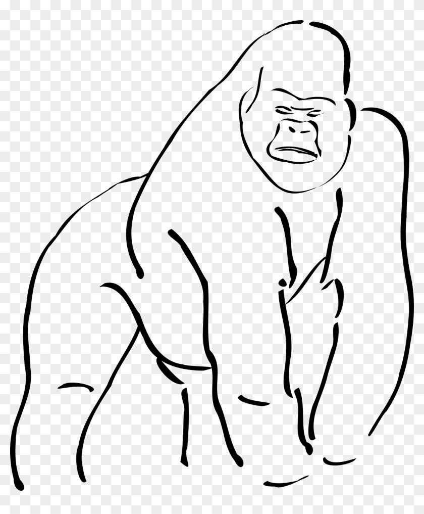 Vector And Cartoon Gorilla Clipart 446 Favorite Clipartfan - Sketch Of A Gorilla #113937