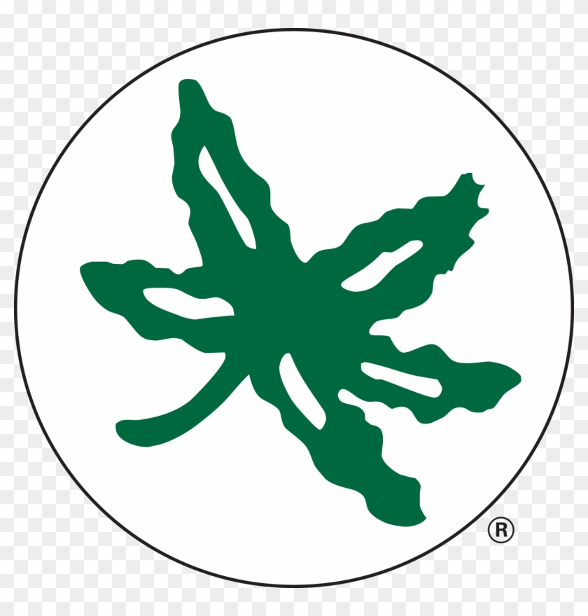 Buckeye Leaf Clip Art Gallery - Ohio State Buckeye Sticker #117815