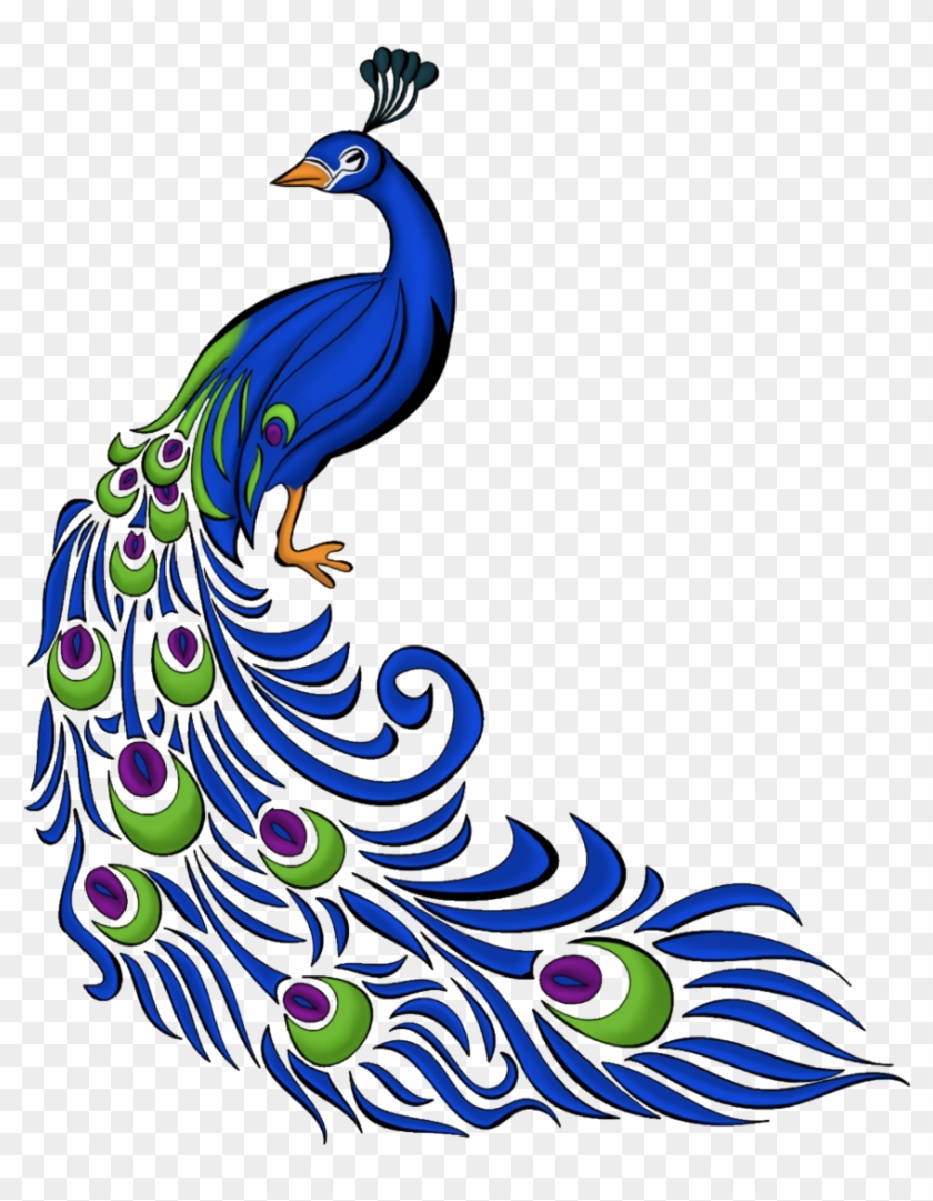 image peacock drawing with colour free transparent png