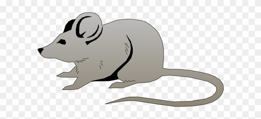 Mouse Clip Art At Clker Com Vector Online Royalty Free - Mouse Vector #118403