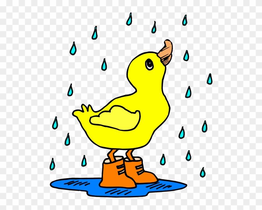Duck In Rain Boots #119768