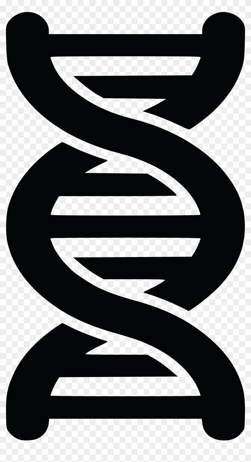 Free Clipart Of A Black And White Dna Strand Double - Double Helix Clipart #120604