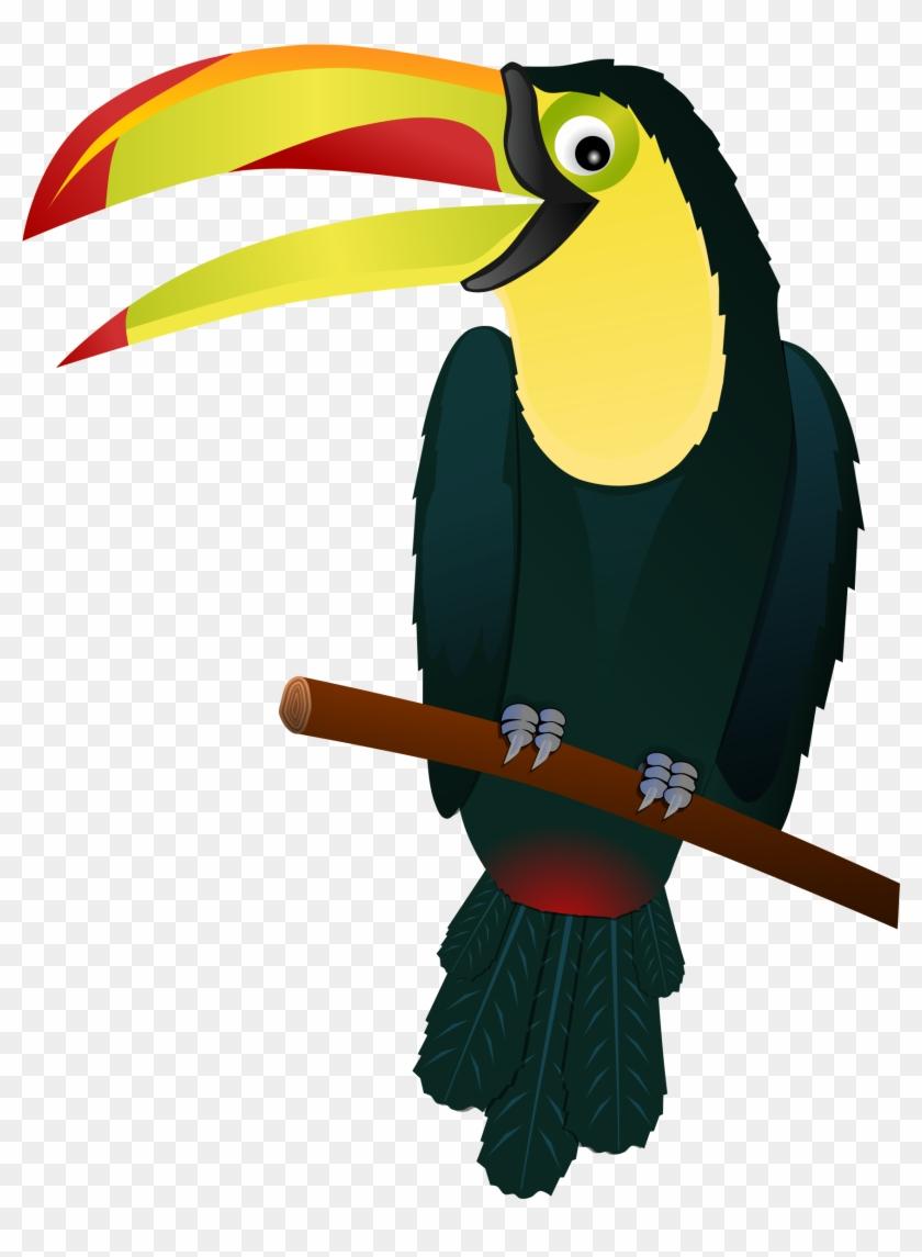 Toucan Clipart Free Clip Art Images - Tropical Bird Clip Art #120616