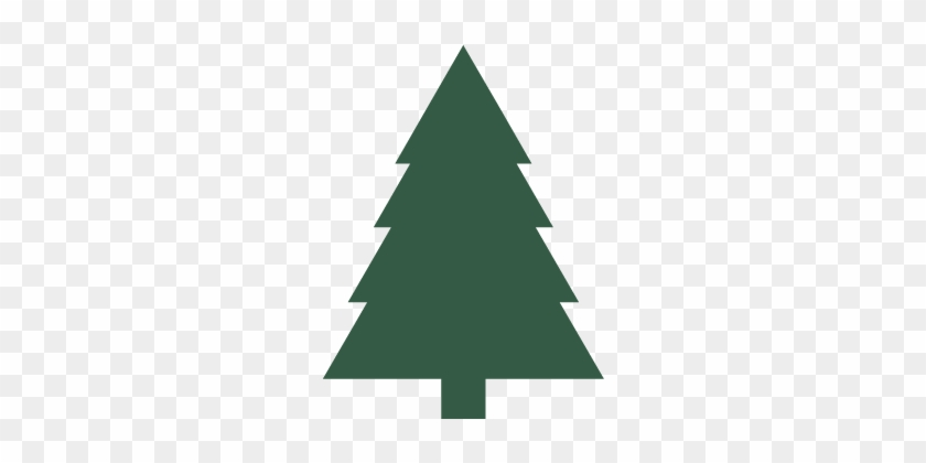 Recology San Mateo County Will Collect Holiday Trees - Christmas Day #642423 - Recology San Mateo County Will Collect Holiday Trees - Christmas Day