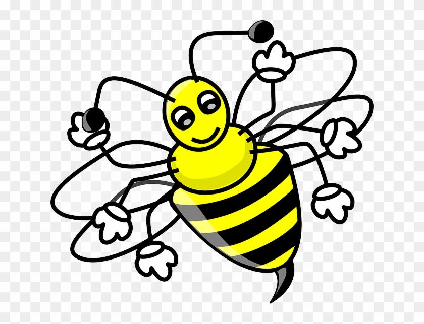 Animals Honey Cartoon Bugs Bee Bug Free Cute