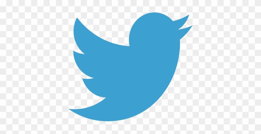 3 Months Ago - Twitter Bird Transparent Background #648189
