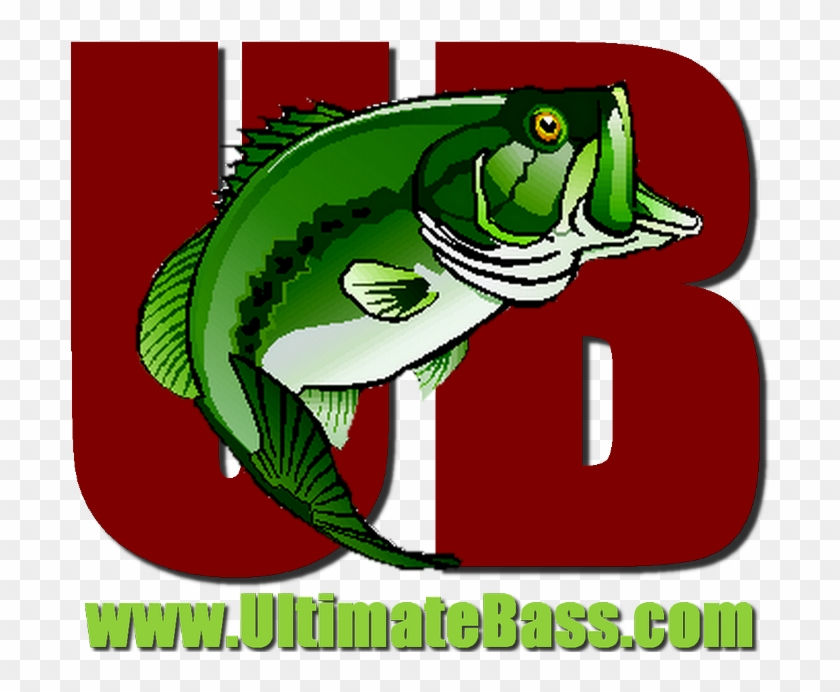 Bass Fishing #652058