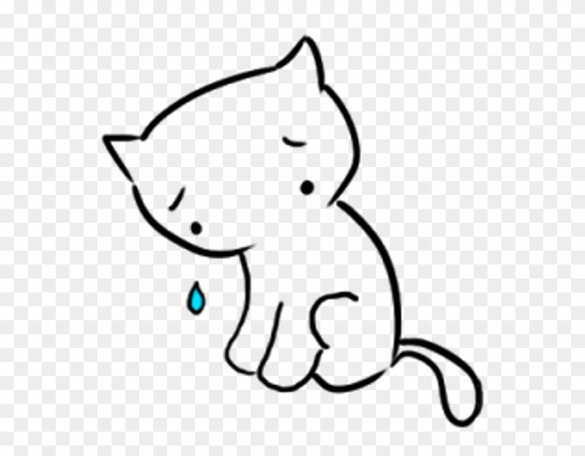 Kitten #653863