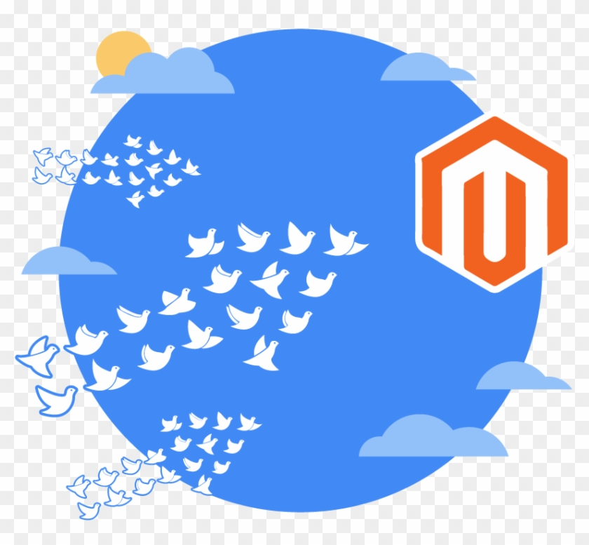 Data Migration To Your New Magento Ecommerce Website - Glow In The Dark Stickers - 3 Assorti #660256