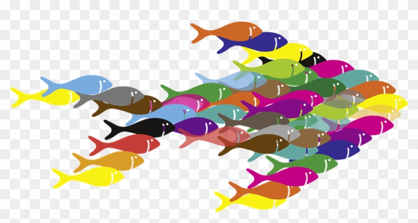 Fish, Swarm - - El Todo Es Más Que La Suma De Sus Partes #663895