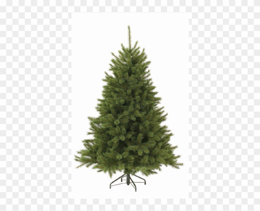 Triumph Tree Forest Frosted Pine - Christmas Tree Without Lights #664550
