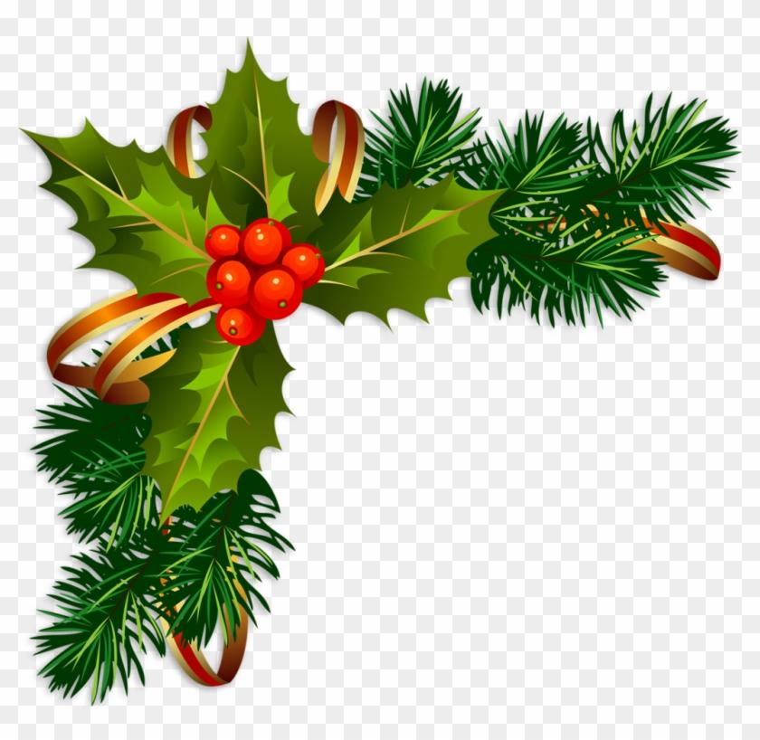 Sapins Branches De Sapins Christmas Tree Abeto Con - Christmas Corner Frame Png #670812
