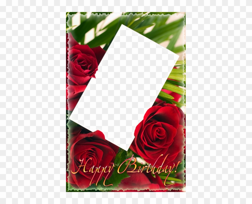 Happy Birthday Png Frame With Roses