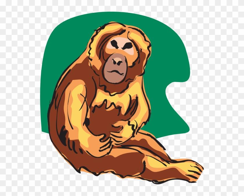 Chimpanzee #672516