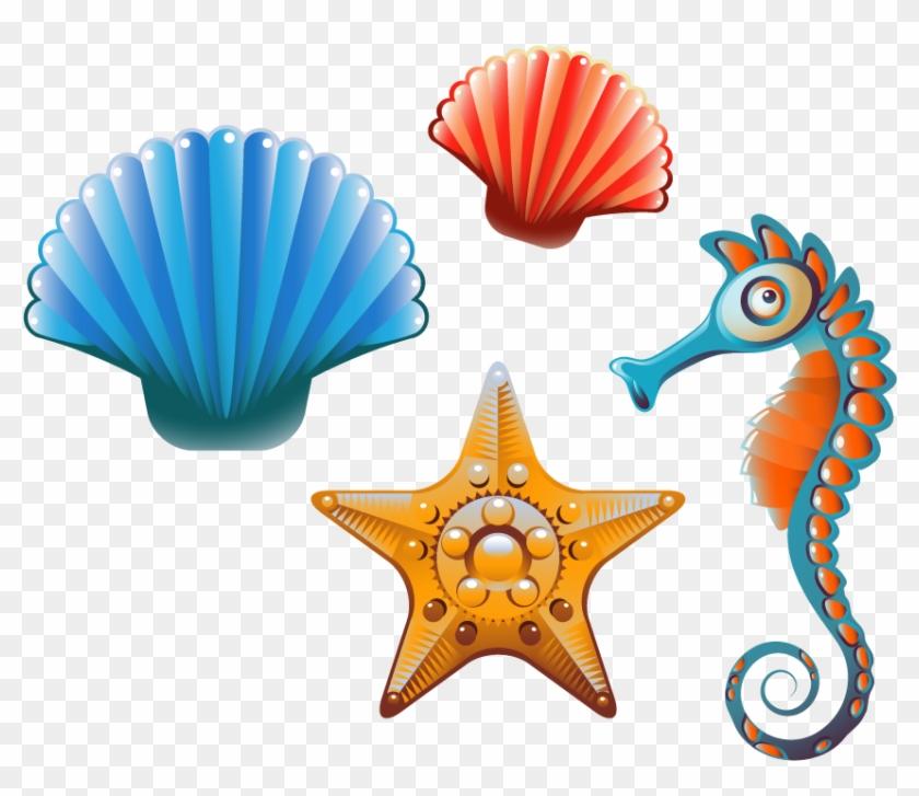 Clam Seashell Cartoon Clip Art - Cartoon Sea Shells #674087