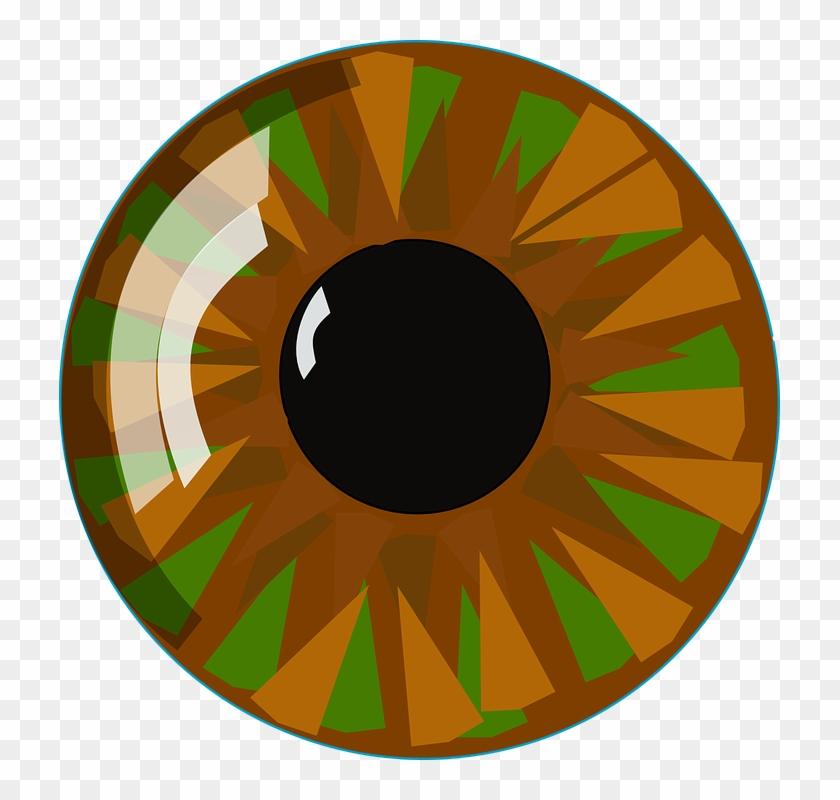 Eyeball Eye Vision Human Look See View Closeup - Vektör Göz Png #120900