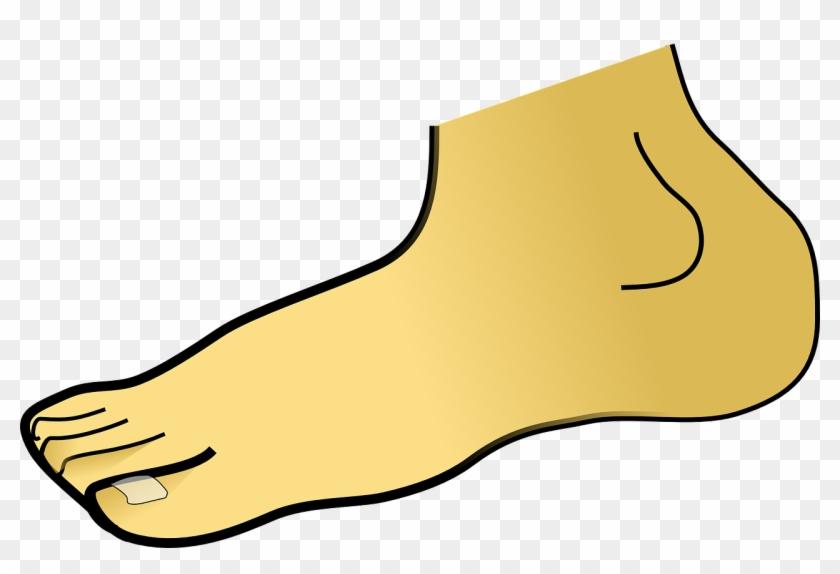 Foot Clipart #121975