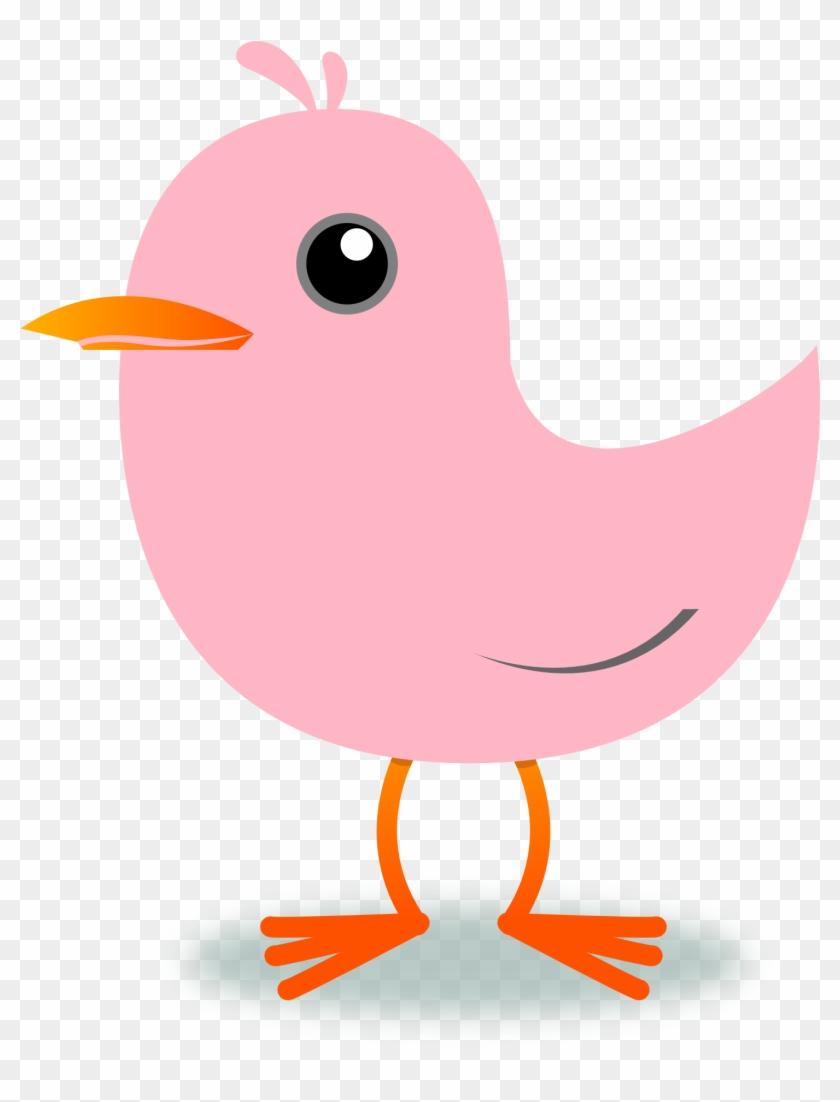 Tweet Twitter Bird Cherry Blossom Pink Xochi - Clipart Bird Png Pink #124040