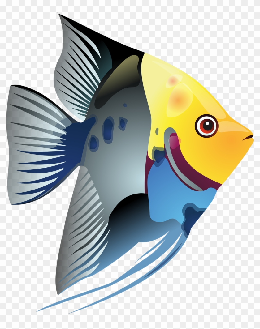 Draw A Simple Fish 10 Step By Step Drawing Lessons, - Clip Art Tropical Fish #124834