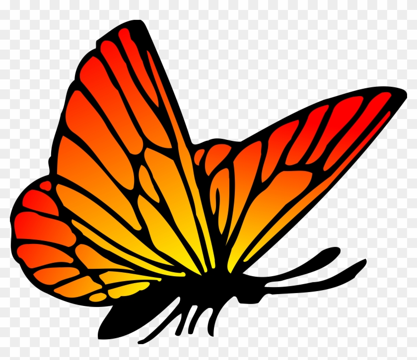 Free Stock Photo Of Red Orange Butterfly Vector Clipart - Red And Orange Butterfly #127660