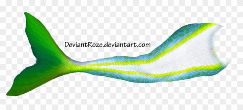 More Like Mermaid Tail 11 By Deviantroze - Photoshop Mermaids Fish Tail #683714