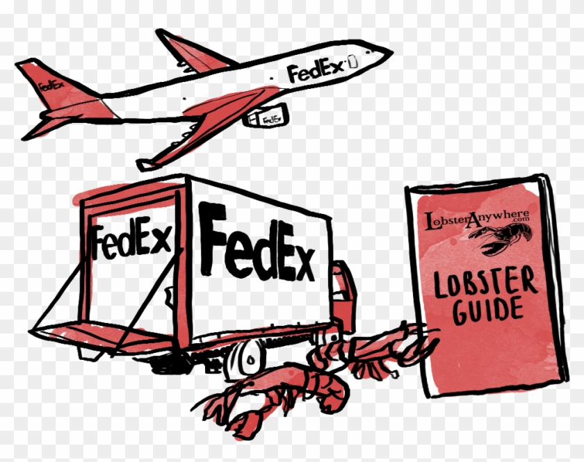 Learn More About How Lobsteranywhere Ships Live Lobster Fedex