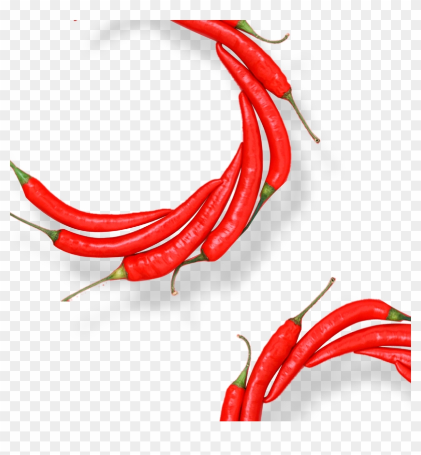 Birds Eye Chili Organic Food Cayenne Pepper Chili Pepper - Birds Eye