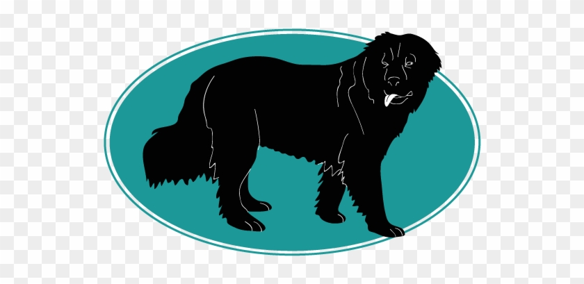 Assur O'poil, Assurance Chien Vous Parle Du English - Moscow Water Dog #691726