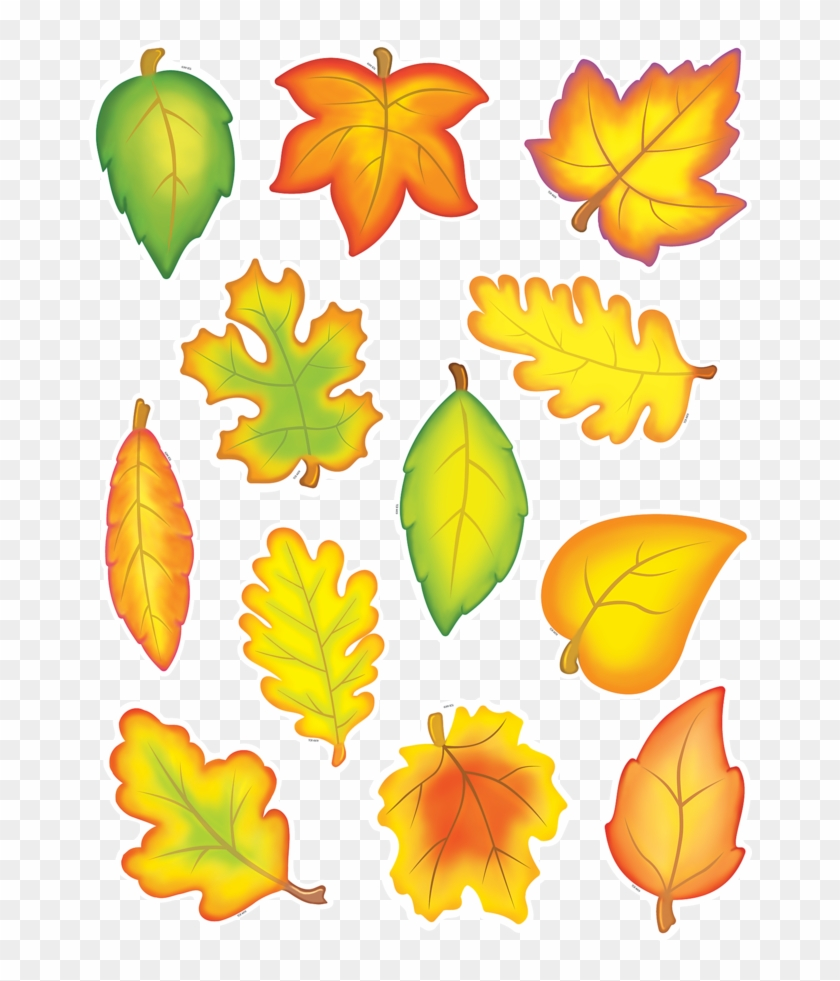 Tcr4419 Fall Leaves Accents Image - Teacher Created Resources Fall Leaves Accents Packs #696822