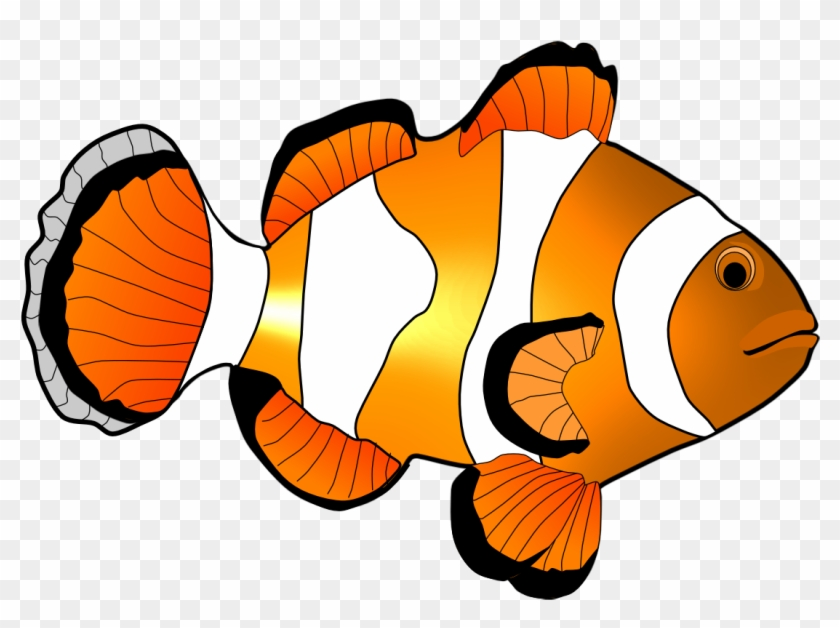 clown fish clip art coral reef fish free transparent png clipart