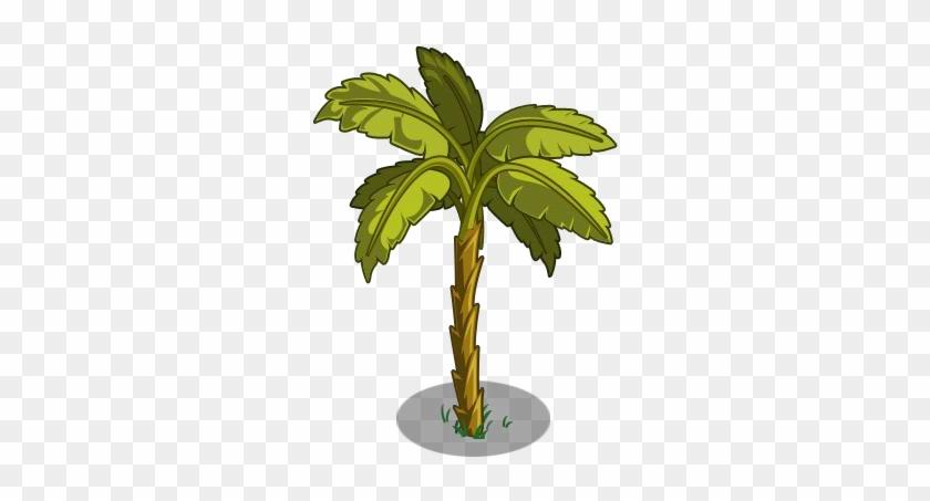 Clip Art Ilration Of A Tropical Banana Tree - Cuban Banana Tree #696879