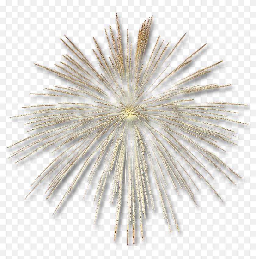 Fireworks Clipart Tumblr Transparent - Gold Fireworks Transparent Background #703713